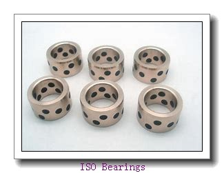 NH1060 ISO cylindrical roller bearings