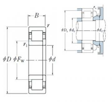 NSK NUP1024 cylindrical roller bearings